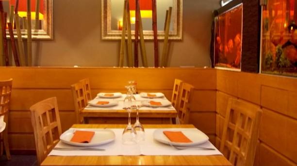 Restaurante de comida china, barato y muy bueno. Gyoza, samosa, sopa picante tailandesa, el pato al estilo Pekín, sashimi y maki.  Se come muy bien por poco precio y hace guiños a la comida japonesa . Buen trato, buena calidad y buen precio. Tienen un menú de 11 €